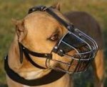 American PitBull Terrier muzzle -Pit bull Wire Basket dog muzzle