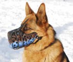 "Leather dog muzzle ""Dondi""-plus style For GSD-K9"