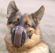 German shepherd leather dog muzzle - gsd
