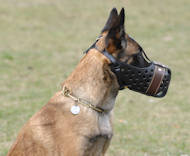 "Leather dog muzzle ""Dondi"" PLUS style For Malinois"