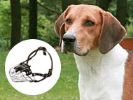 american-foxhound-muzzles
