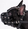 French Bulldog dog muzzle
