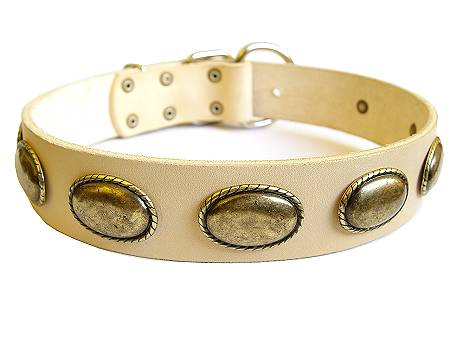 Retro Rulz - Gorgeous Vintage Dog Leather Collar  for Mastiff dog