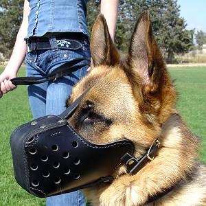 training dog muzzle- k9 leather muzzle