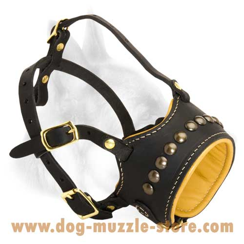 Nappa Padded Leather Dog Muzzle With Perfect Air Flow