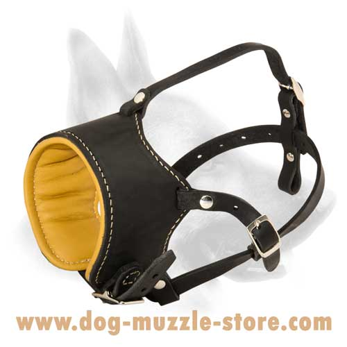 Comfortable Leather Dog Muzzle With Nappa Padding