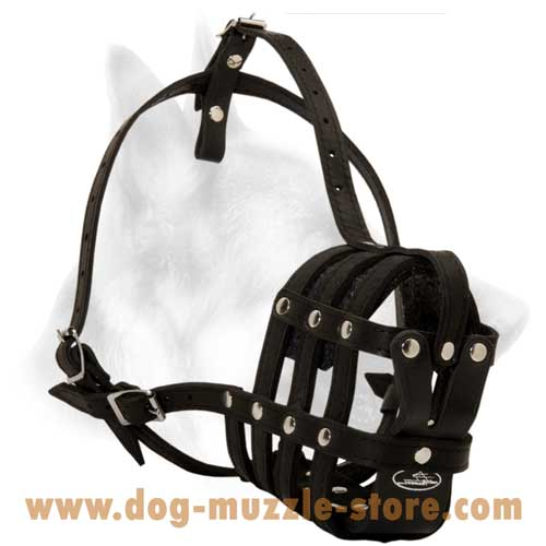 Leather Basket Dog Muzzle For Medium Dog Breed