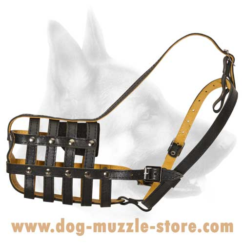 Non-Toxic And Safe Dog Muzzle With Soft Nose Padding