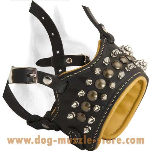 Super Leather Dog Muzzle Prevents The Dog's Snout  Rubbing