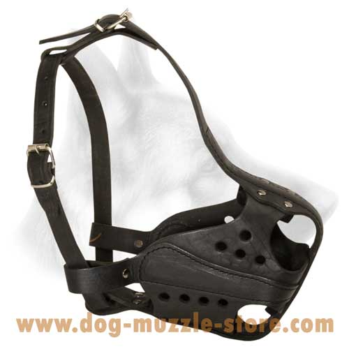 Incredible Leather Dog Muzzle With Soft Padding