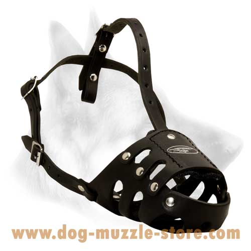 Easy Adjustable Leather Dog Muzzle With Soft Padding