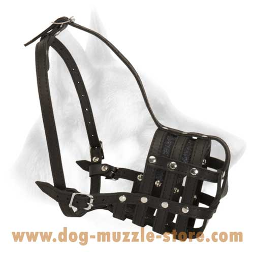 Super Designed And Easy Adjustable Leather Basket Dog