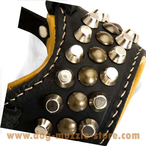Unusually Studs Decorated Dog Muzzle With Adjustable  Straps