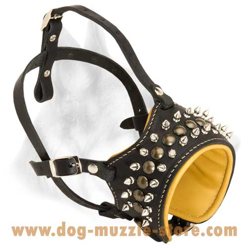 Comfortable In Use Leather Dog Muzzle With Soft Nappa  Padding
