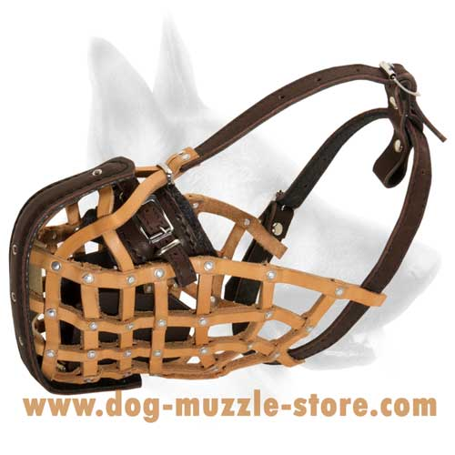 Everyday Leather Dog Muzzle With Easy Adjustable Straps