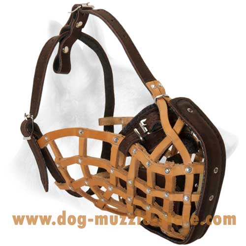 Comfortable Leather Basket Dog Muzzle With Soft Felt